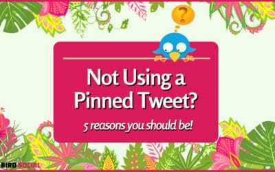 5 Reasons to Use a Pinned Tweet